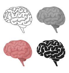 brain icon in cartoon style isolated on white vector image