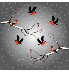 Bullfinch on rowan branch snow merry christmas vector