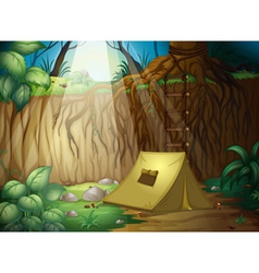 Camping in jungle vector