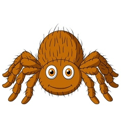 Cute tarantula spider cartoon vector