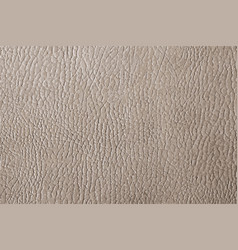 Grey leather texture vector