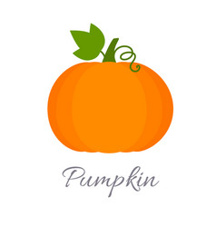 pumpkin icon with title vector image