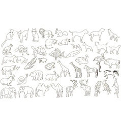 Rough animals vector