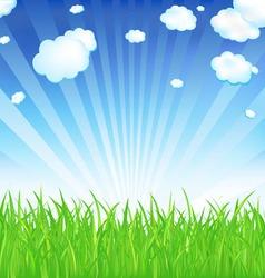 Fresh spring grass vector