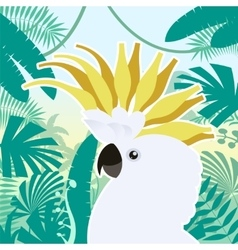 Cockatoo on the Jungle Background vector