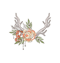 Deer horns and roses hand drawn floral vector