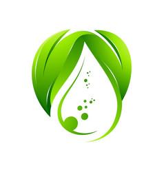 Green leafs water drop inside logo vector
