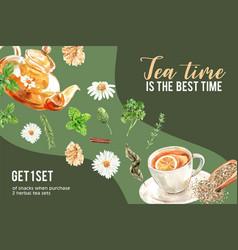 Herbal tea frame design with parsley bay basil vector