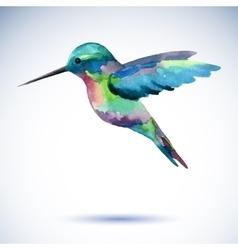 Hummingbird watercolor painting bird on white vector