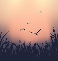 Landscape with grass and flying seagulls vector image