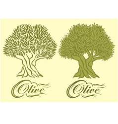 pattern with an olive tree for packaging vector image