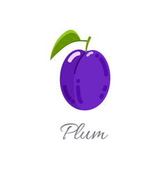 Plum icon with title vector