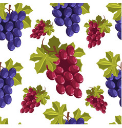ripe grapes bunches vegetarian fruits seamless vector image