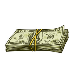 vintage colorful cash stack concept vector image