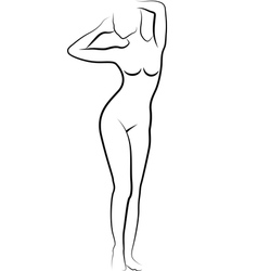 sketch of nude woman vector image