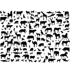 big collection of animals vector image