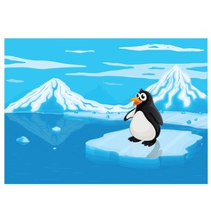penguine on ice lce land vector image