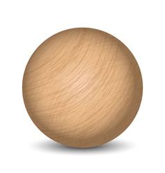 wooden ball vector image vector image