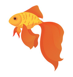a cartoon goldfish stylized goldfish aquarium vector image