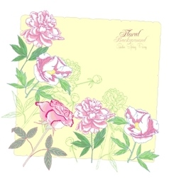 Background with flowers peonies and pink rose-01 vector