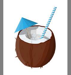 half coconut on white cold drink vector image