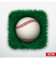 Icon Baseball ball in green grass vector