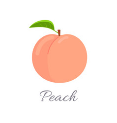 Peach icon with title vector