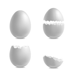 realistic 3d detailed white closeup shell eggs set vector image