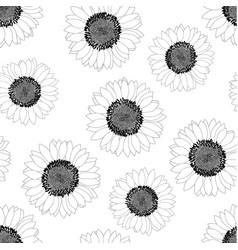 Sunflower outline seamless on white background vector
