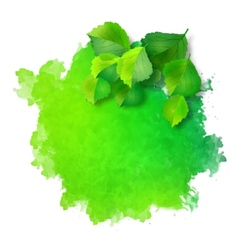 watercolor spot with green leaves vector image
