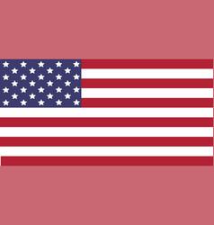 usa flag image of usa flag the star vector image vector image