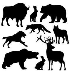 black outline wild forest animals vector image