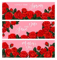 Blooming spring rose flower greeting banner design vector