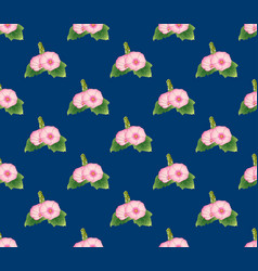 pink hollyhock on indigo blue background vector image