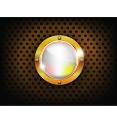 shiny button vector image vector image