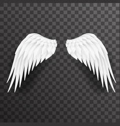 angel white wings bird fly 3d realistic design vector image