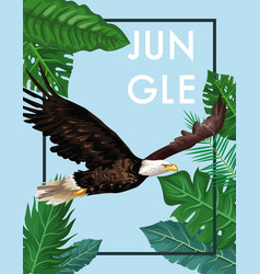 eagle in the jungle vector image