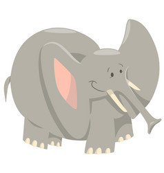 Elephant cartoon wild animal vector