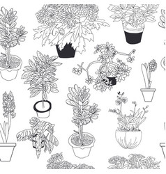 Seamless pattern different house plants vector
