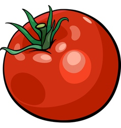 Tomato vegetable cartoon vector