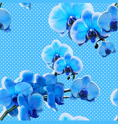seamless pattern with blue orchids vector image vector image