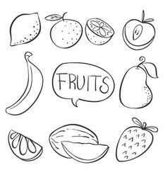 Doodle of fruit hand draw vector