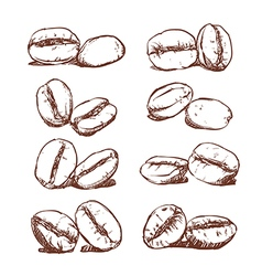 Coffee bean Hand drawn vector image
