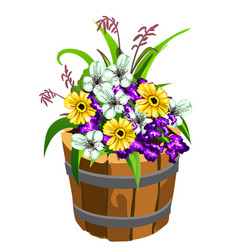 flower pot in the shape of a old wooden bucket vector image
