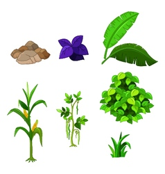 Various plants cartoon set for you design vector