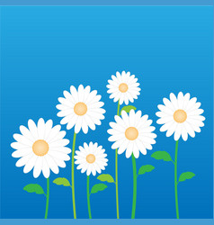 white daisy flower in decorative stock vector image