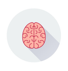 brain icon on round background vector image