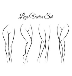 woman legs set vector image