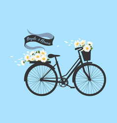 Bicycle with camomile vector