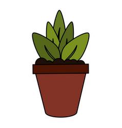 color image cartoon plant in pot decorative vector image